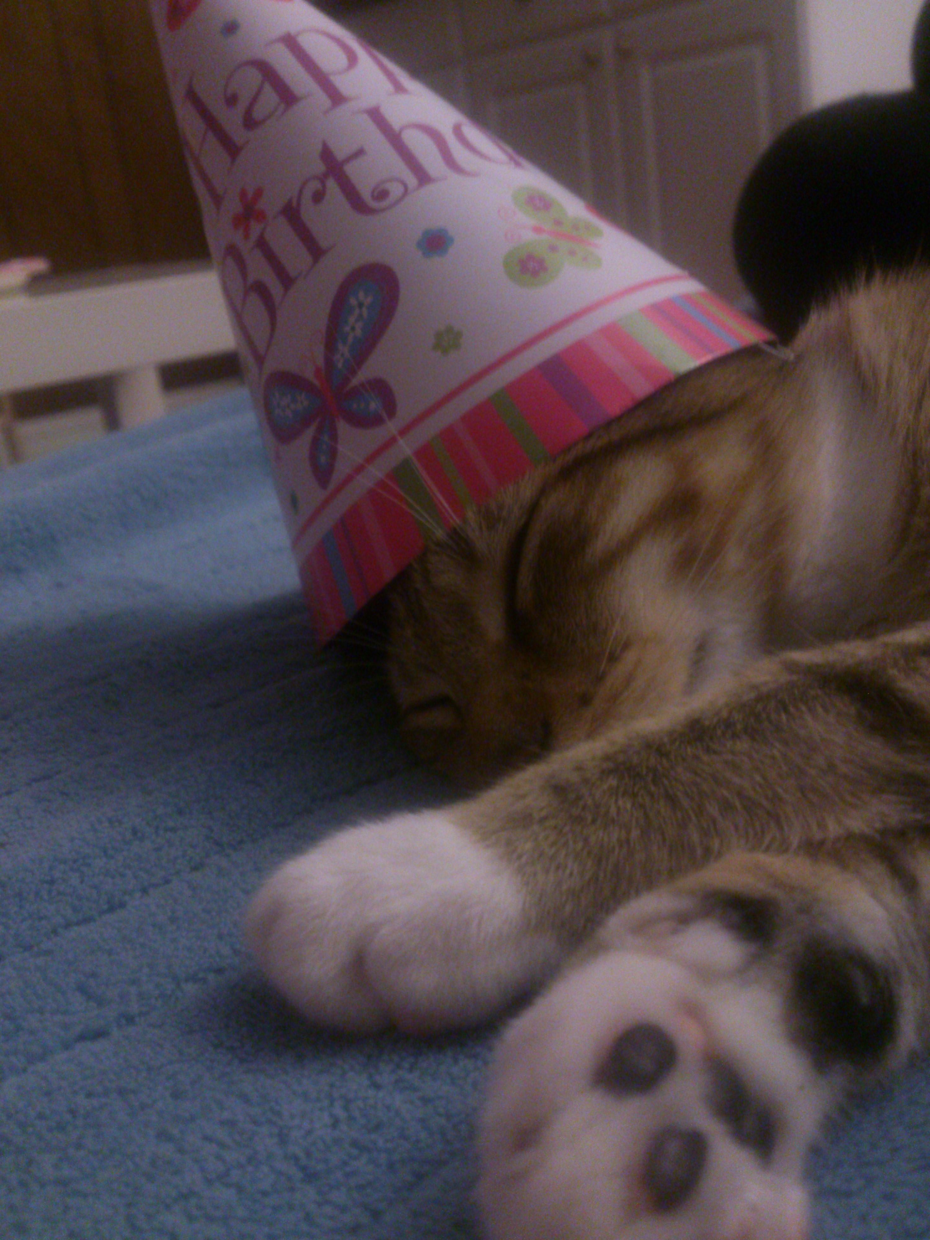 Happy Birthday Scorpio Girl 生日快樂 happy birthday,