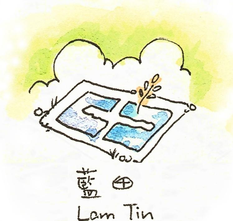 lam tin